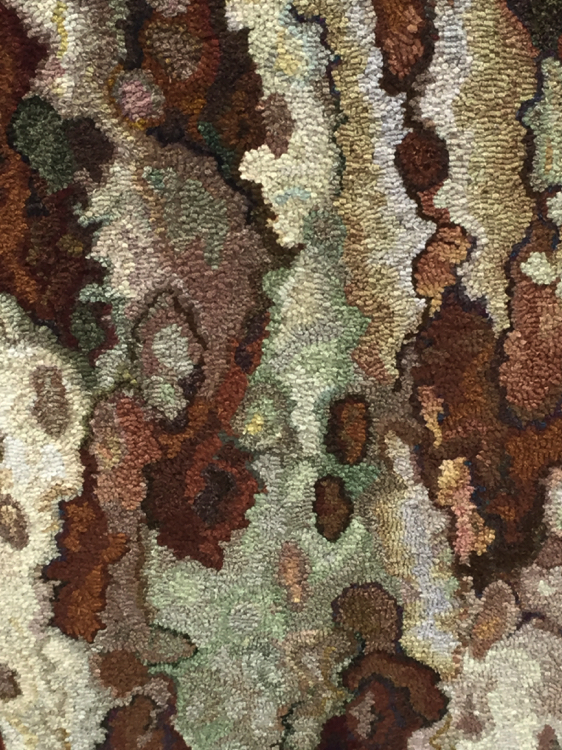 Sycamore Close Up